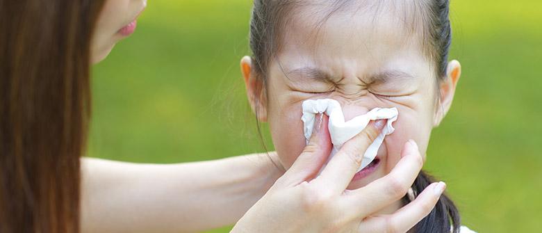 Vida boa causa alergia?