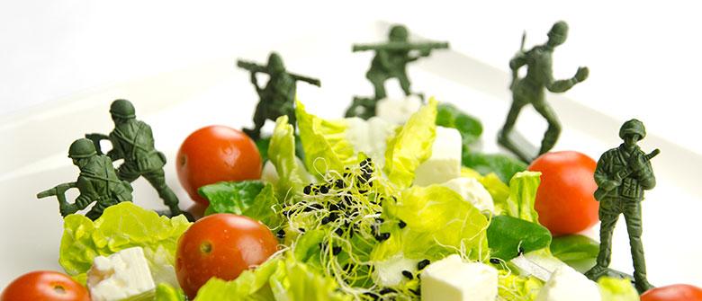 Dieta da guerra