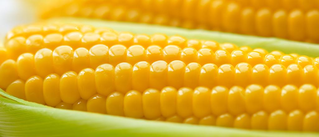Sim, o milho pode ser diferente