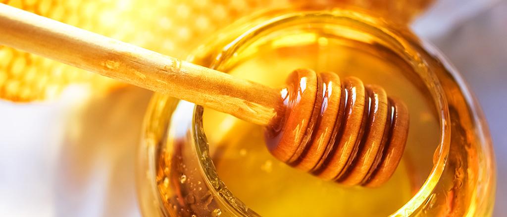 Desvendando os sabores do mel