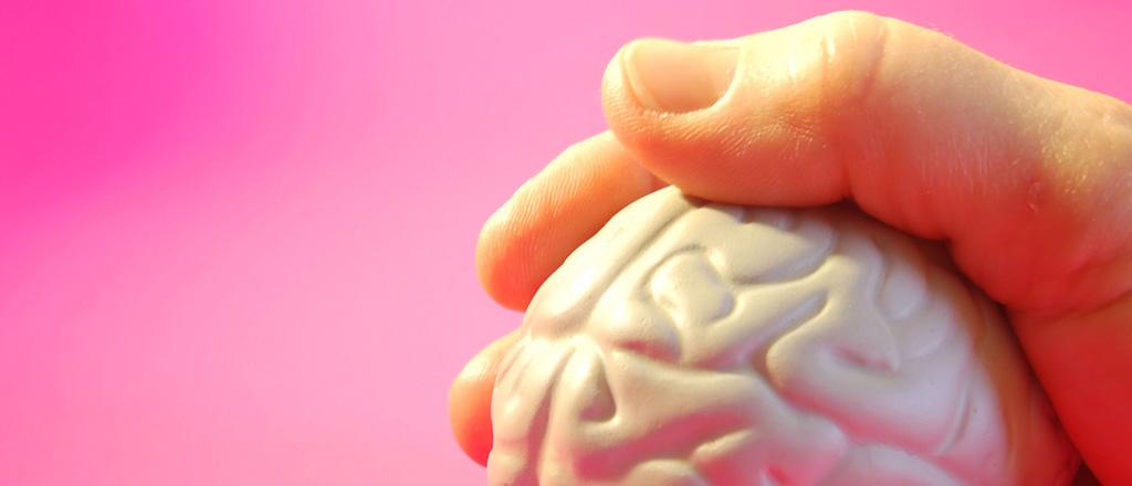 Encolhendo o cérebro