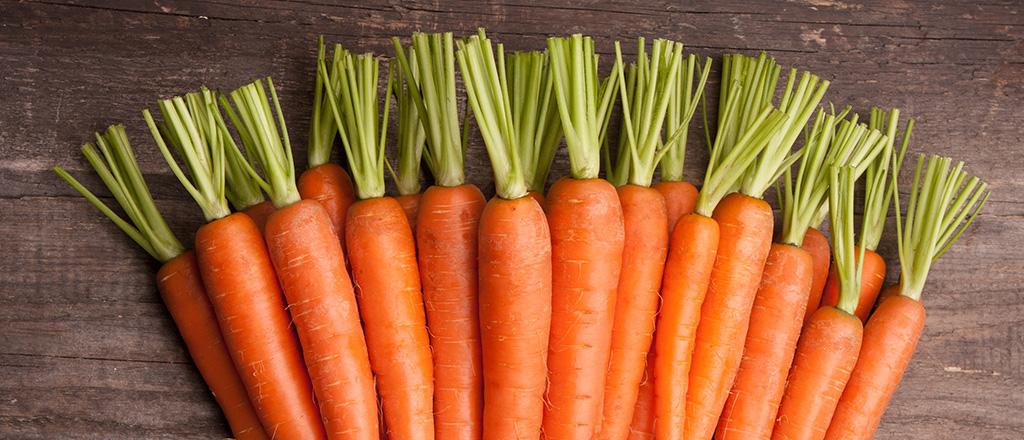 A cenoura de cara nova