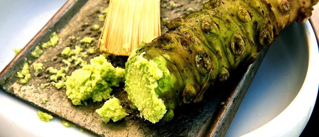 Descoberto o segredo do wasabi