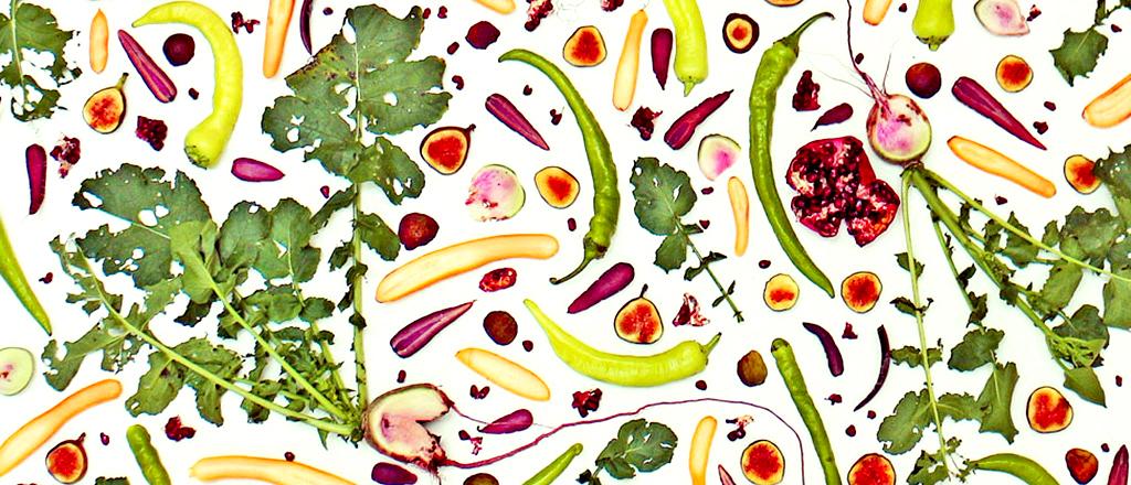 A arte da nutrição