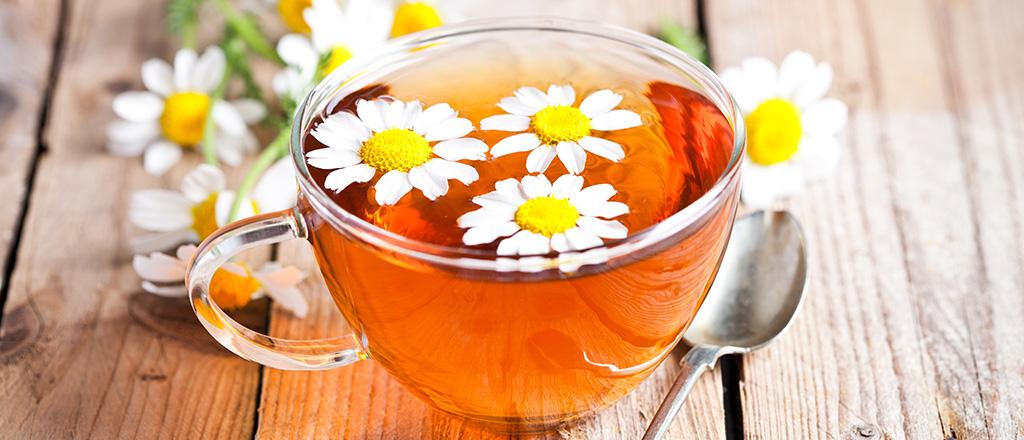 O chá da longevidade