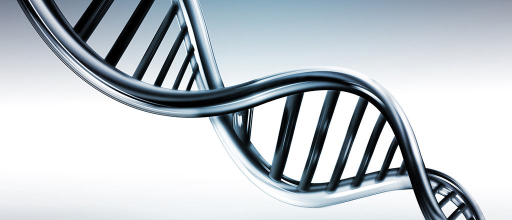 A cura da obesidade está no DNA